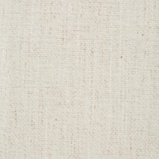 White Pepper Drapery and Upholstery Fabric by RM Coco