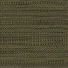 Zircon Drapery and Upholstery Fabric by Kasmir