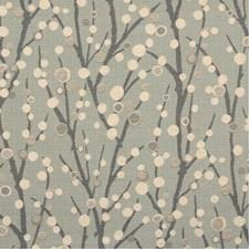 SHERIDAN 62J5082 by JF Fabrics