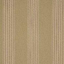 Basil Drapery and Upholstery Fabric by RM Coco