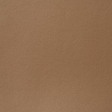 Chestnut Drapery and Upholstery Fabric by Pindler