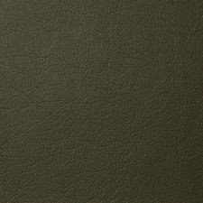 Loden Drapery and Upholstery Fabric by Pindler