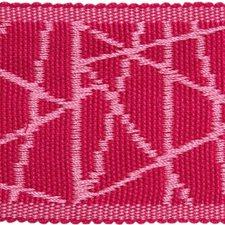 Braids Raspberry Trim by Kravet