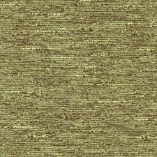 Eucalyptus Drapery and Upholstery Fabric by RM Coco