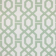 Succulent Drapery and Upholstery Fabric by RM Coco