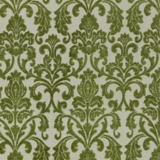 Pickle Drapery and Upholstery Fabric by RM Coco