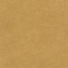 Mustard Drapery and Upholstery Fabric by Silver State