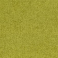 Basil Drapery and Upholstery Fabric by Kasmir