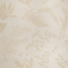 Sand On Oyster Floral Wallcovering by Stroheim Wallpaper