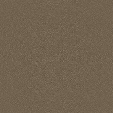 Black/Bronze Print Wallcovering by Cole & Son Wallpaper