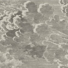 Gilver/Charcoal Print Wallcovering by Cole & Son Wallpaper