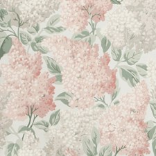 Bslipper/Dve/Sbirch Print Wallcovering by Cole & Son Wallpaper