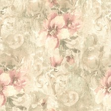 Pink Scroll Wallcovering by Brewster