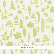 Chartreuse Wallcovering by Schumacher Wallpaper