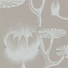 White/Grey Wallcovering by Cole & Son Wallpaper