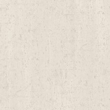 Creme/Beige Contemporary Wallcovering by JF Wallpapers