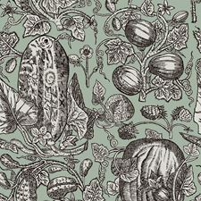 Mint Wallcovering by Cole & Son Wallpaper