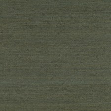 Black/Yellow/Gold Transitional Wallcovering by JF Wallpapers