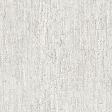 Grey Cream Wallcovering by Cole & Son Wallpaper