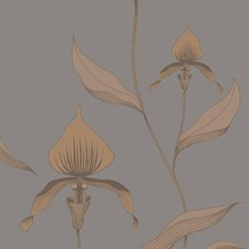 Bronze/Slate Botanical Wallcovering by Cole & Son Wallpaper