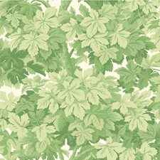 Leaf Green Botanical Wallcovering by Cole & Son Wallpaper
