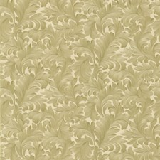Beige Scroll Wallcovering by Brewster