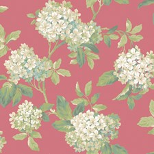 Pinks Flowers Wallcovering by York