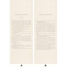 Beige/Black Novelty Wallcovering by Andrew Martin Wallpaper