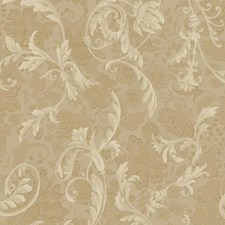 Tan/Gold/Beige Floral Wallcovering by York