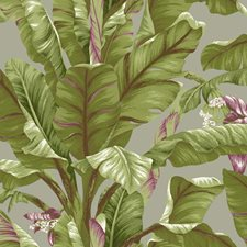 Grey/Light Yellow/Green Tropical Wallcovering by York