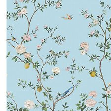 Spring Bloom Wallcovering by Scalamandre Wallpaper
