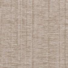 Birch Wallcovering by Innovations