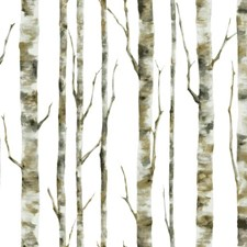 White/Grey/Tan Children Wallcovering by York