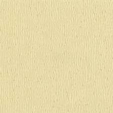 CL1855 Vertical Weave by York
