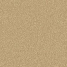 Gold/Tan Textures Wallcovering by York