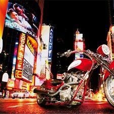 DM653 Midnight Rider Wall Mural by Brewster