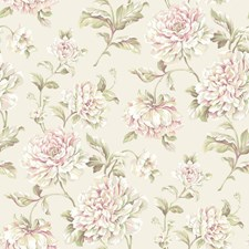 Off-white/Peachy Pink to Dark Pink/White Floral Medium Wallcovering by York
