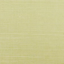 Spring Wallcovering by Scalamandre Wallpaper