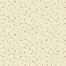 Cream Floral Mini Wallcovering by York