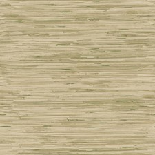Moss Green/Tan/Wheat Gold Faux Grasscloth Wallcovering by York