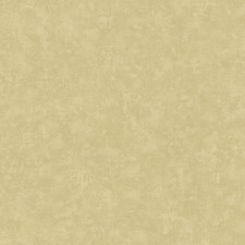 Soft Gold/Taupe/Cream Textures Wallcovering by York
