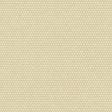 Chalk White/Gold Glint Raised Prints Wallcovering by York