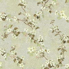 Pale Taupe/Grey/Cream Botanical Wallcovering by York