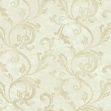 Beige/Cream/Medium Beige Traditional Wallcovering by York