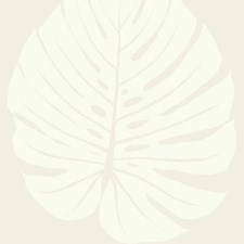 VA1232 Bali Leaf by York