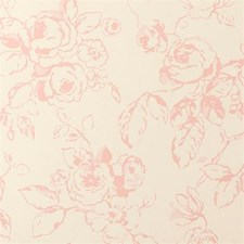 Rose Floral Large Wallcovering by Clarke & Clarke