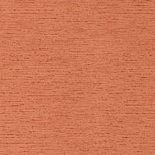Spice Solid Wallcovering by Clarke & Clarke