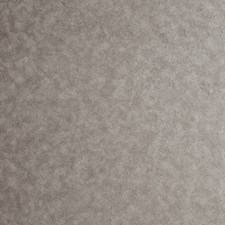 Pewter Solid W Wallcovering by Clarke & Clarke