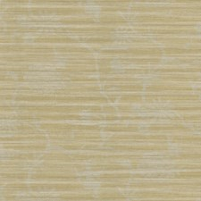 Yellow/Beige/Grey Toile Wallcovering by Kravet Wallpaper