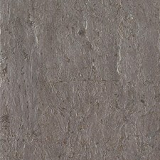 Taupe/Silver/Metallic Solids Wallcovering by Kravet Wallpaper